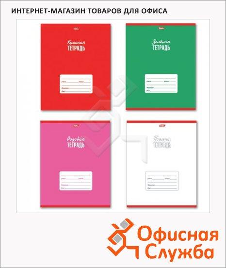 Тетрадь школьная Hatber Цветная тетрадь, А5, 18 листов, в клетку, на скрепке, мелованный картон, 012332
