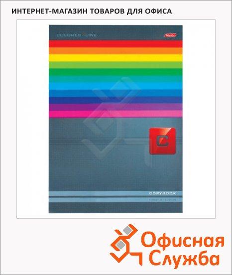 фото: Тетрадь общая Hatber Яркие полосы A4, 80 листов, в клетку, на склейке, мелованный картон