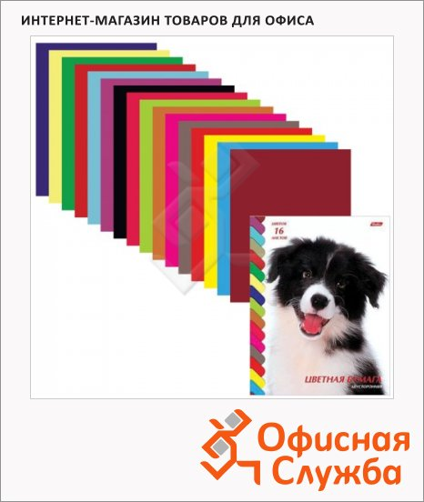 фото: Цветная бумага Hatber 16 цветов А4, 16 листов, двухсторонняя, Щенок