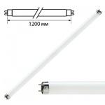 Лампа люминесцентная Philips TL-D 36W/33-640 36Вт, G13, 1200мм, холодный белый