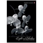 Тетрадь Альт Престиж Орхидея, А4, 160 листов, в клетку, на сшивке, ламинированный картон