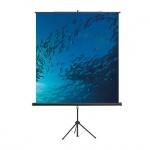 Экран для проектора мобильный Magnetoplan Cineflex, на треноге, 150х150 см