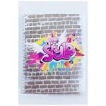 Тетрадь общая №1 School Graffiti, А5, 48 листов, в клетку, на спирали, мелованный картон
