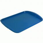 Поднос прямоугольный синий, 47х33 см