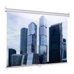 Экран для проектора настенный Lumien Eco Picture 160х160см