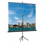 Экран для проектора мобильный Lumien Eco View 160х160см, на треноге