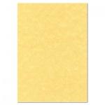 Дизайн-бумага Decadry Corporate Line золотой пергамент, А4, 95г/м2, 25 листов