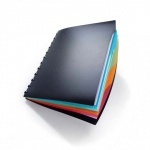 Папка-органайзер Durable черная, А4, на 20 файлов, Duralook, 2435-01