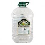 Вода питьевая Сказочный Лес детская без газа, 5л, ПЭТ