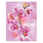 Тетрадь на кольцах Hatber Розовая орхидея, А5, 120 листов, в клетку, ламинированный картон