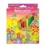 ���������� Brauberg Flowers 24 �����, ���������