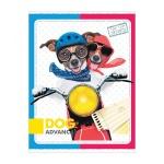Блокнот Office Space Забавные собаки, А6, 120 листов, в клетку, на сшивке, ламинированный картон