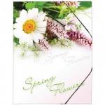 Пластиковая папка на резинке Berlingo, А4, Spring Flowers