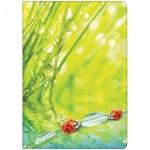 Папка-уголок Berlingo Ladybird, А4, 180мкм
