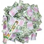 Хлопушка пневматическая Поиск денежный взрыв, 40см, в пластиковой тубе