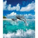 Тетрадь общая Мировые Тетради Дельфины, А5, 48 листов, в клетку, на скрепке, картон