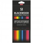 Набор цветных карандашей Hatber Black Diamond 12 цветов, черное дерево