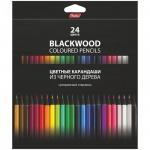 Набор цветных карандашей Hatber Black Diamond 24 цвета, черное дерево