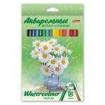 Набор акварельных карандашей Hatber Букет 18 цветов