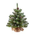 Ель декоративная Triumph Tree Императрица 60см, зеленая