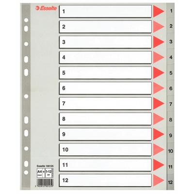 Цифровой разделитель листов ESSELTE Maxi 100125, А4, 12 разделов