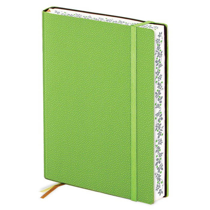 Ежедневник недатированный InFolio Froggy, А6, 12 х 17см, 160 листов, зеленый