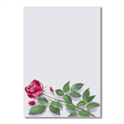 Большой лист для открытки